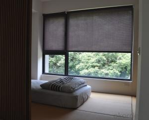 Two-color Series Shade Curtains Simple PVC Blind Fabric