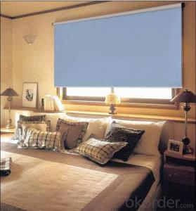 motorized waterproof loaded roller blinds with magic screen