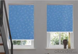 Roller  Blinds  Curtain  Romantic  Style for Window Decor