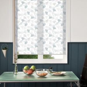 Roller  Blinds  Curtain for Window Decor