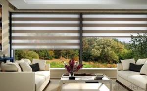 Day Night zebra blinds/Easy operation zebra blinds/curtains