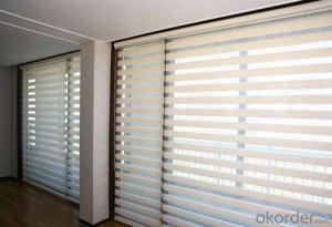 Zebra Blinds with Plain Design for Home Center Blinds
