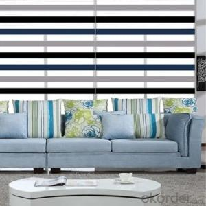 Zebra Paper Blinds with plain design for Home Decor