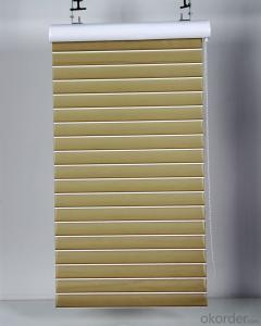 motorized loaded roller blinds with magic screen
