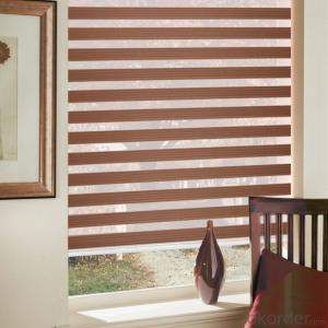 roller blinds outdoor for the living room