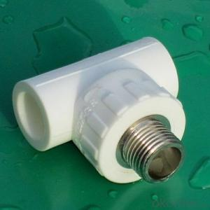 PPR Pipe and Fittings Female Tee and Equal Tee from China