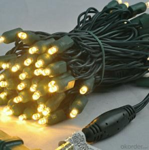 Colorful Led Light String for Outdoor Indoor Wedding Holiday Party Decoration Decoration