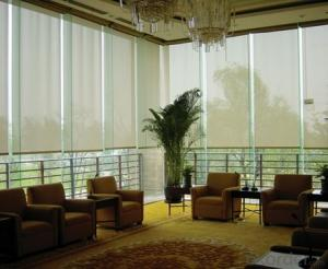 Motorized Vertical Zebra Print Shades Window Blinds