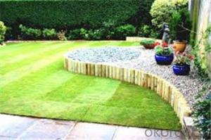 Garden Decorative Artificial Grass for Viewing
