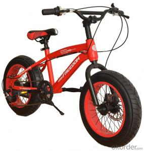 Beach Snow Bike 16 Inches 5 Speeds Custom Fat Tire Bicycle  High Carbon Steel Chinese Supplier