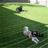 Attractive Garden Using Landscape Artificial Grass