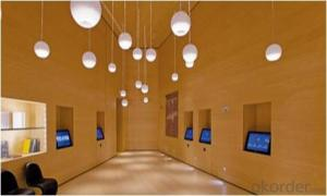 Bamboo Building Materials Interior / Exterior Build i200™ Series    Bamboo Veneer Overview