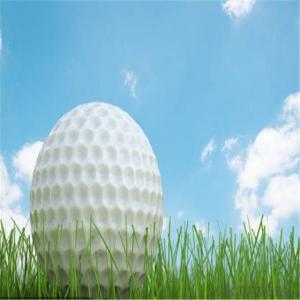 Sport Artificial Grass  Of  Golf Court  Surfaces