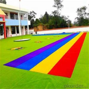 Kindergarten Childcare Center  With Colorful Artificial Grass
