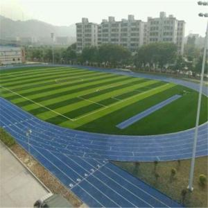Artificial grass/on the school football field