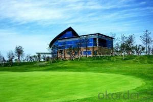 Community Green Artificial Grass/Artificial Turf /Skin Soft