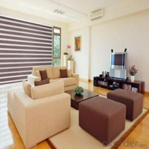 Roller Blind Home Decor Curtains for The Living Room