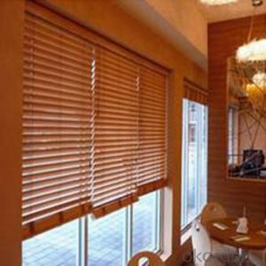 Roller Blind Designer Home Decor for The Living Room