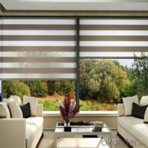 Zebra Blinds with Matching Shower Curtains and Blinds