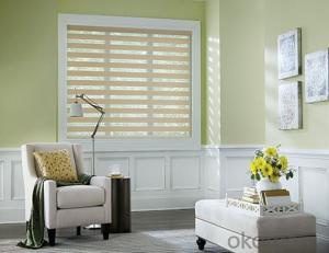 Waterproof motorized blinds with remote control and bracket accessories