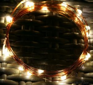Clear Copper Wire String Lights for Outdoor Indoor Wedding Christmas Decoration