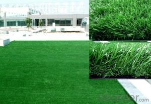 Natural Sport Court Artificial grass or turf or lawn