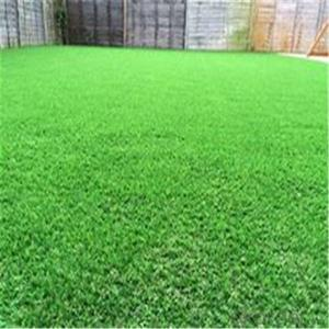Turf for Leisure and Decoration Artificial  grass