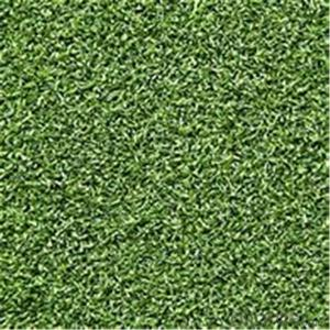 Encrypt artificial turf football field artificial artificial turf plastic carpet