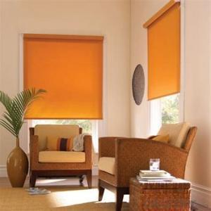 Roller Blind Designer Home Decor for Living Room