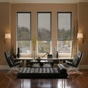 Zebra Window Blind with Printed Pattern for Living Room