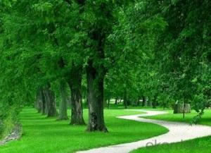 Artificial Grass Playground Outdoor Artificial Grass Carpet 40mm Height