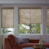 Manual spring/ mechanism fabric roller blind