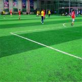 Turf artificial Lawn  Badminton  Sport Grass