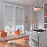 Zebra Roller Blinds Designers Home Decor for The Living Room