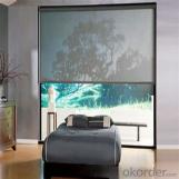 Zipper Roller Blind Curtain for The Living Rooms