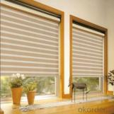 Motorized Window Blinds Photos Roller Blinds Motor