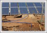 Economical Plant Irrigation in Turkey