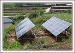 Solar pumping irrigation