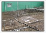 Prairie Irrigation and Livestock Drinking Water