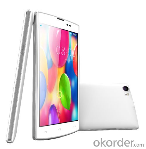 Smartphone Dual Sims Dual Standby with Multi-Languange 5.5Inch Screen