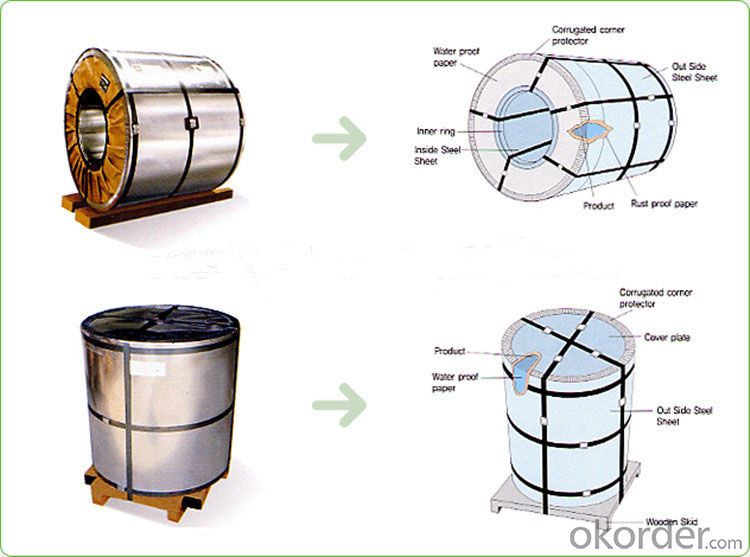 0.3mm Thickness Prepainted Galvanized Steel Coil for Construction