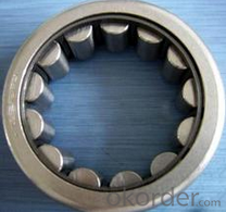 Cylindrical Roller Bearing Manufacturer China