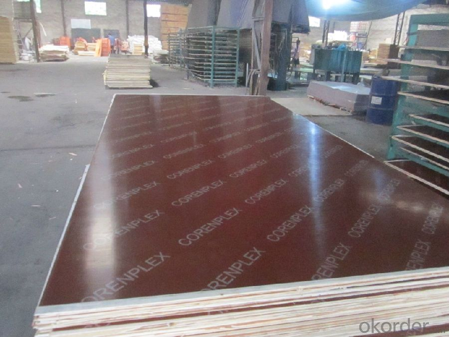 waterproof film faced plywood malaysia from linyi
