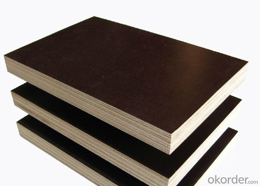 Film Faced Plywood Poplar Core Paint  with Good Quality