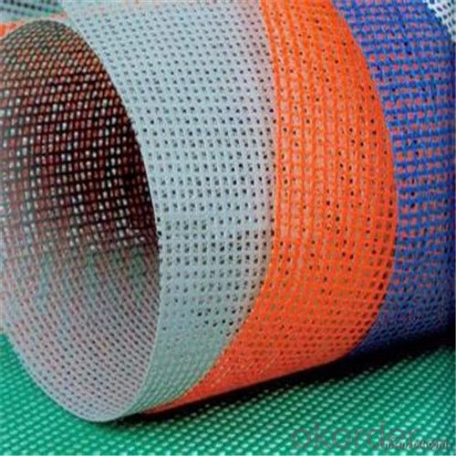 Fibreglass Mesh Reinforcing the Coating