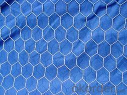 Hexagonal Iron Wire Mesh for Building Materials with High Qulaity