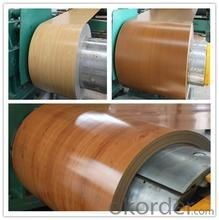 Printing  Rolled Steel coil in China in good quality