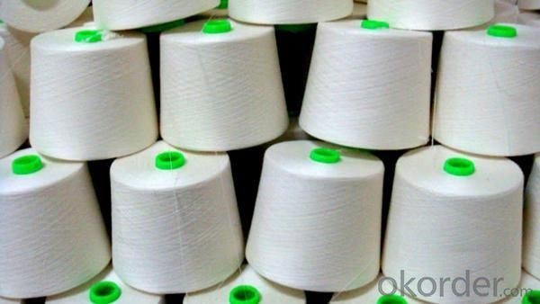100% Nylon Polyester Yarn Raw White Color