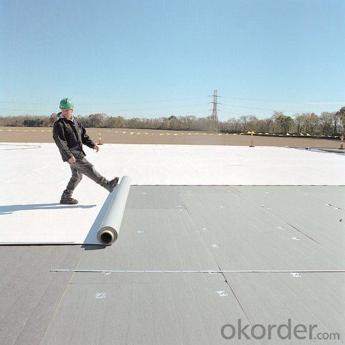 PVC High Polymer Waterproofing Membrane for Construction Field
