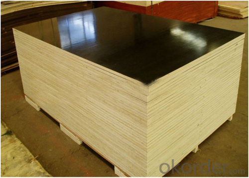 21mm Waterproof Black Film Faced Plywood for Sale